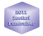 Ice Visions Places at the Zoofari Fundraiser